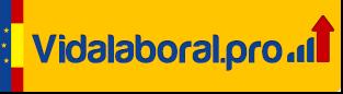 Logo vidalaboral.pro
